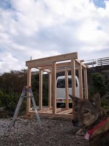 犬小屋仮組み