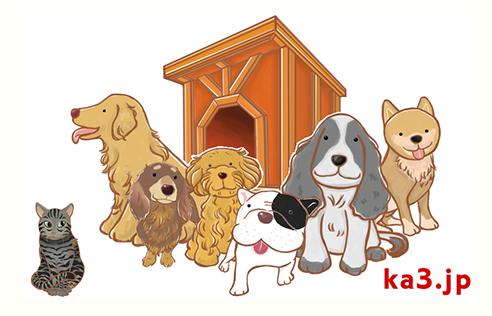 カッサンの犬小屋が愛されている理由