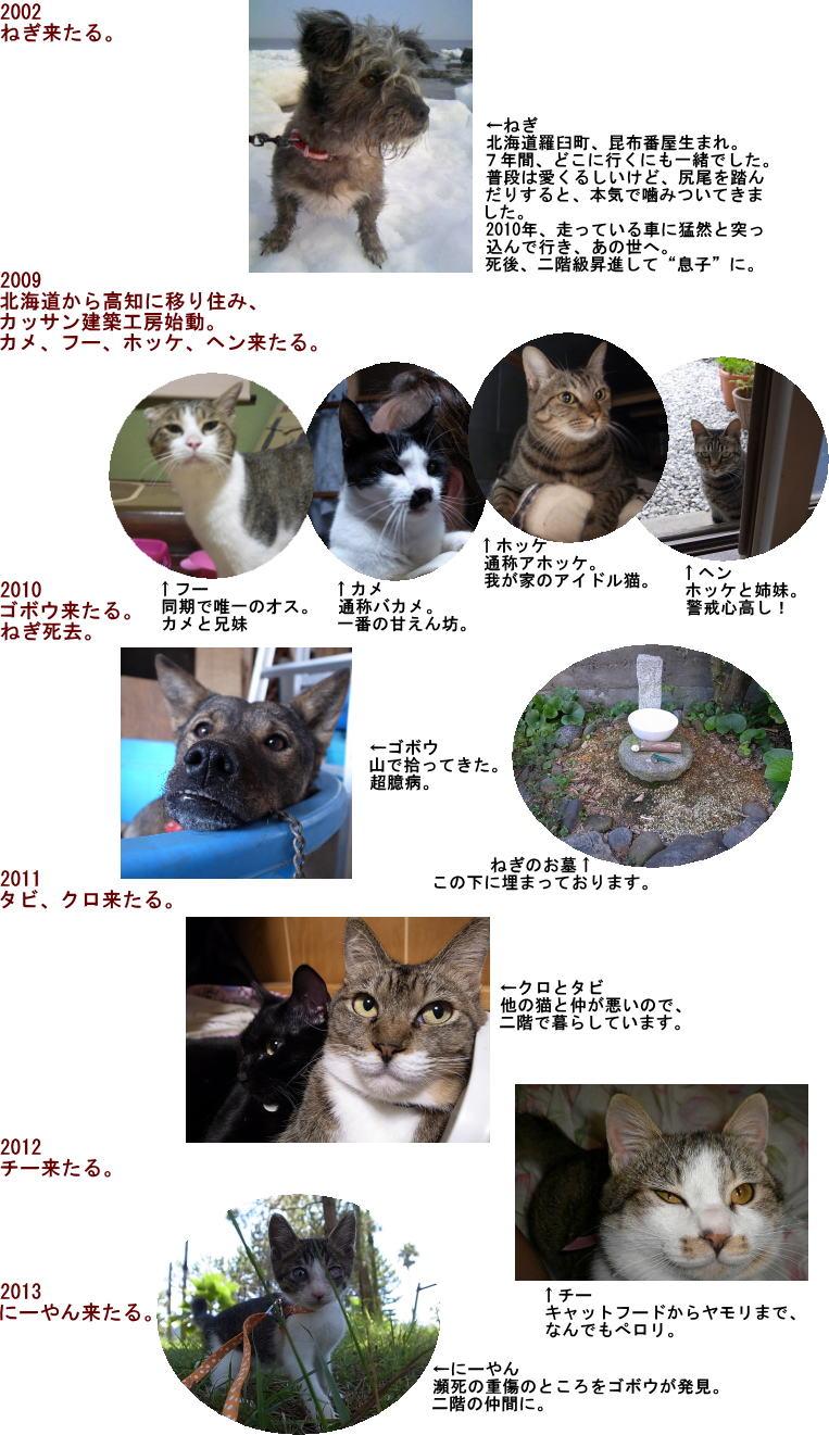 飼い犬・飼い猫の系譜図