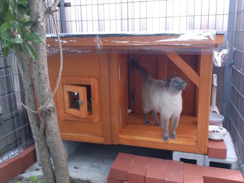 外用・猫ちゃんハウス